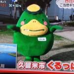 日本テレビZIP!「くラベロ!」に久留米市キャラクターくるっぱが登場!西日本と東日本ご当地キャラが多いのは?