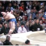 柳川市出身 琴奨菊 初優勝おめでとう!10年ぶりの日本人力士優勝!