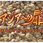 テレビ西日本「アジアへの扉」化粧品の製造、販売を行う久留米市の会社 CTC-LANKAが放送