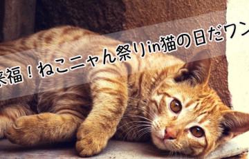 猫好き必見!『来福!ねこニャん祭りin猫の日だワン』