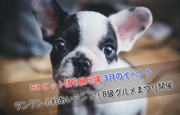 hit ヒット久留米住宅展示場 3月のイベント ワンワンふれあいランド B級グルメまつり他 開催!
