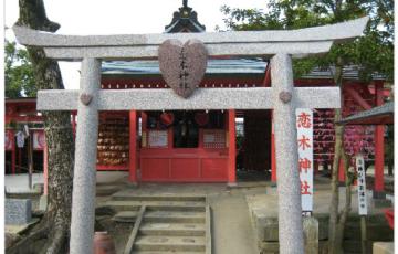 NHK総合テレビ「ドキュメント72時間」3月18日 筑後市 恋木神社が放送されます。