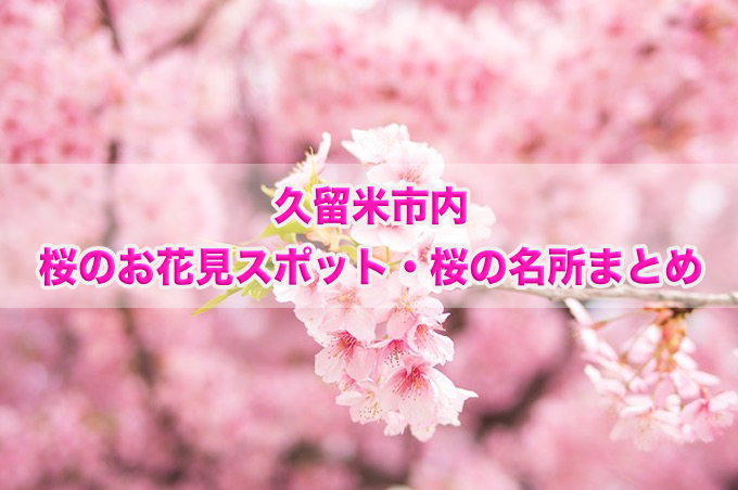 福岡県久留米市内 桜のお花見スポット・桜の名所まとめ