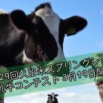 第29回久留米スプリングショー 乳牛コンテスト 3月19日開催