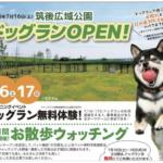 筑後市 筑後広域公園に九州最大級「ドックラン」がオープン!7月16~18日(月)の三日間無料に!