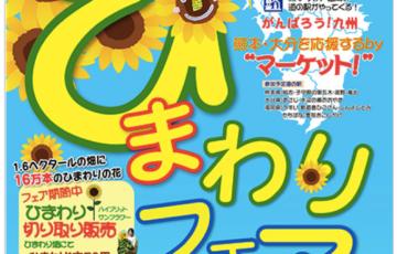 16万本のひまわりが咲きほこる!道の駅 原鶴 「ひまわりフェア2016」