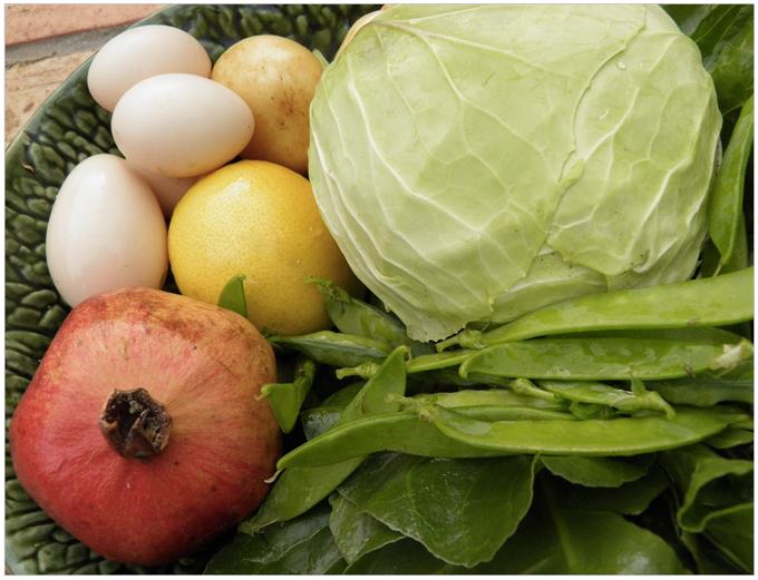 新鮮な農産物や農産加工品を多数取り揃えた『キラリ久留米農産物マルシェ』開催!