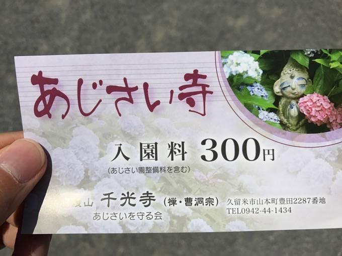 久留米市 千光寺(あじさい寺)チケット