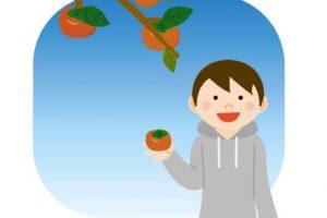 柿祭り&ヌーボー祭り 田主丸の柿狩りとワイナリーのヌーボー祭り