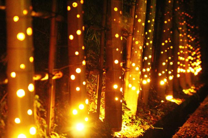 久留米市南薫天満宮 「南薫竹燈籠」約3,500本の竹灯篭が幻想的に!