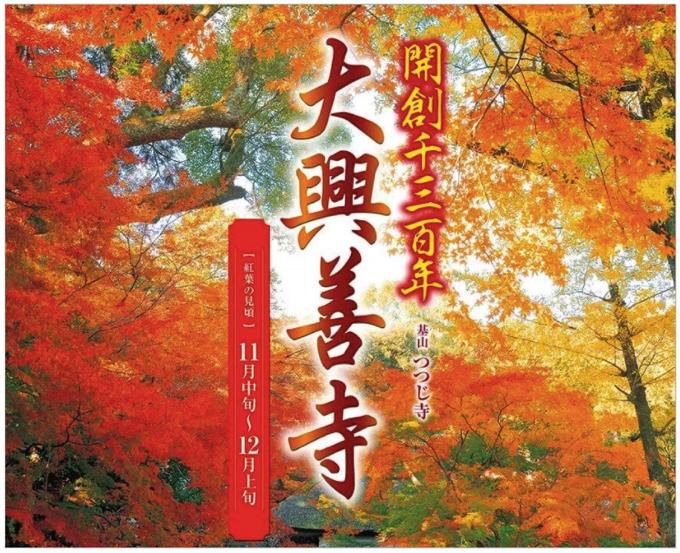 大興善寺 紅葉ライトアップ 大興善寺の開創1300年記念