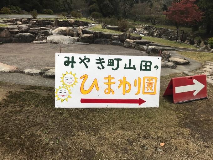 山田水辺公園・ひまわり園までの看板