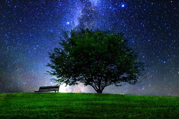 クリスマスコンサート「星と音楽の夕べ」プラネタリウムで星空と音楽