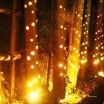 100万人のキャンドルナイト 燈明の夜in柳川「でんきを消して、スローな夜を」