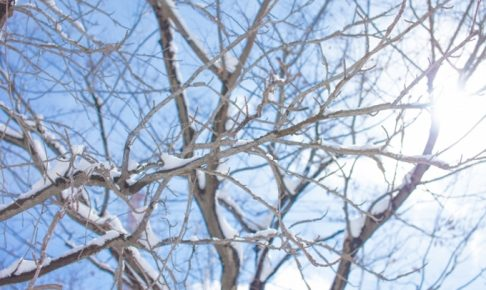 久留米市・筑後地方 12日にかけて寒気が強まり雪になる恐れ