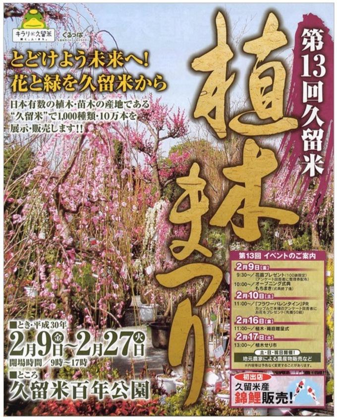 第13回 久留米植木まつり