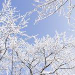 福岡管区気象台 大雪注意報 久留米市も対象に