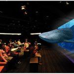 オキナワフェスティバル 3Dソニーアクアリウム~沖縄「美ら海」の世界~ 3D体験!