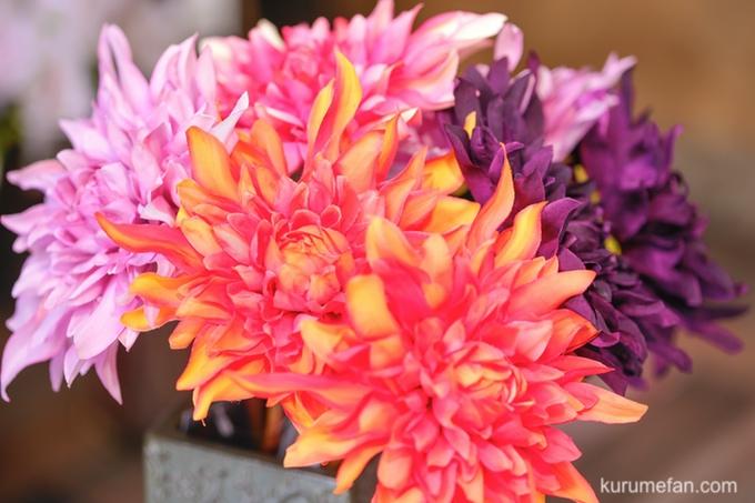アーティフィシャルフラワーショップClarte(クラルテ)造花3