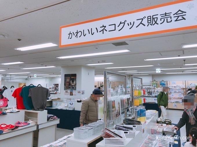 岩合光昭 写真展「ねこ」 かわいいネコグッズ販売会