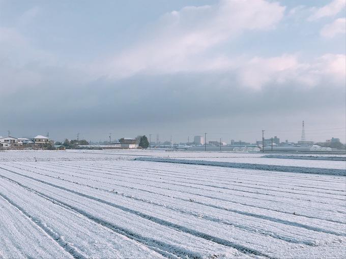 久留米市 雪が積もる!辺り一面真っ白!12日まで大雪,雷注意報