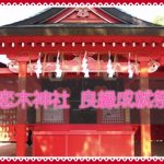 筑後市 恋木神社「良縁成就祭」毎年2度の良縁成就特別祈願