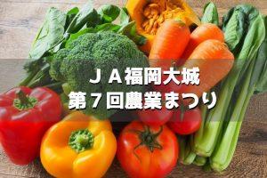 JA福岡大城「第7回農業まつり」B級グルメ、巨大巻き寿司作り開催