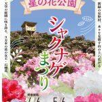 星の花公園シャクナゲまつり 3万本シャクナゲとツツジが天空の庭園に咲き誇る