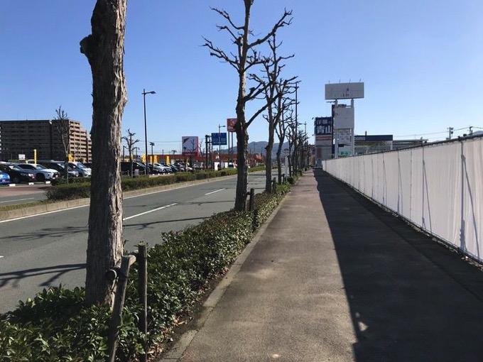 Fesutebaru garden kamitu 2018 0013