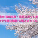 久留米市 桜の名所・花見スポットまとめ!サクラ開花情報 穴場スポットも!
