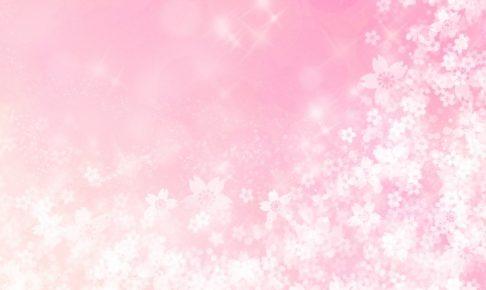 NHK ふるさとのたから「復興見守る桜並木~福岡 朝倉~」