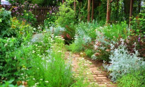 田主丸花と庭の会オープンガーデン 自慢の庭を一般公開するイベント