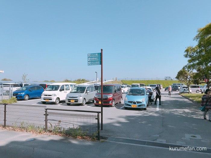 柳川市 中山熊野神社の中山大藤 駐車場