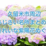 久留米市周辺 あじさい名所まとめ!きれいな紫陽花めぐり