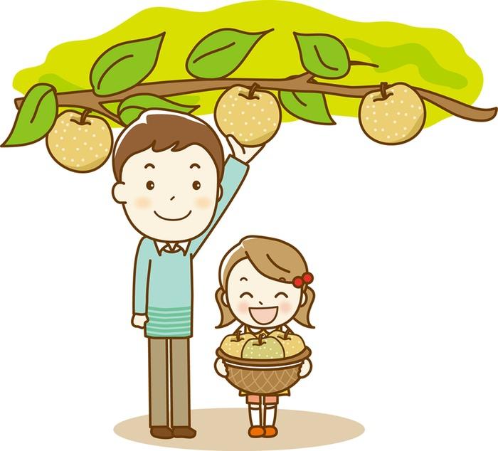 久留米市 梨狩り!中村果樹園フルトリエ!100年のおいしい歴史を重ねる藤山の梨