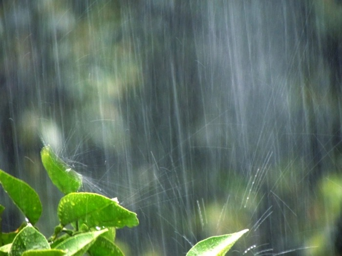 久留米市 大雨 雷 洪水 注意報!JR 基山から久留米運転見合わせ