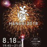 小郡市「夢HANABI 2018」約8,000発の色とりどりの花火