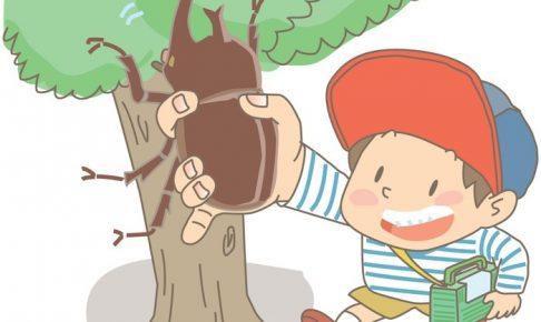 ホームセンターサカモト かぶと虫トーナメント 優勝者にはプレゼント!