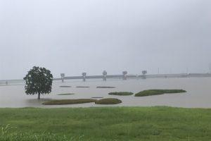筑後川がかなり増水!久留米市 大雨(土砂災害、浸水害)洪水警報