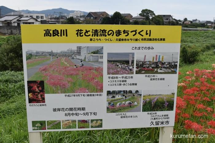 高良川 花と清流のまちづくり