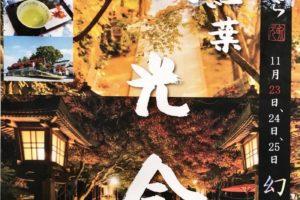 かえる寺(如意輪寺)楓光会 光と紅葉!境内ライトアップ【小郡市】
