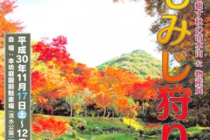 もみじ狩り 心を癒す秋の清水山&物産展 みやま市の紅葉