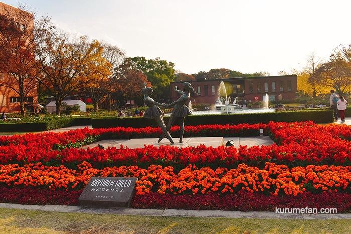 石橋文化センター入口の花々