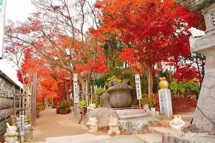 如意輪寺(かえる寺)の紅葉を見てきた!美しさに秋を感じる【小郡市】
