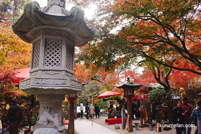 小郡市 如意輪寺の美しい紅葉