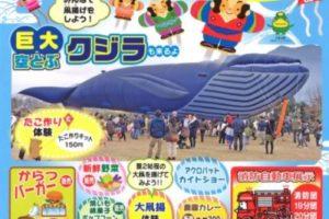 ふれあい農業公園 たこあげ大会 巨大空とぶクジラ 日本伝統凧展も