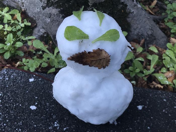 2018年12月29日 久留米市 雪だるま