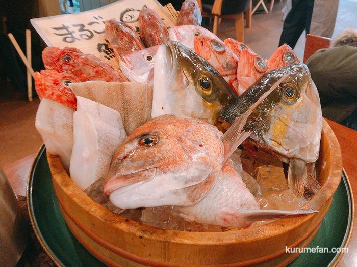 MARUGOTO(まるごと)鮮魚定食 選択