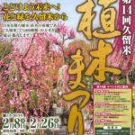 第14回 久留米植木まつり 植木苗木の業者が大集合!展示即売