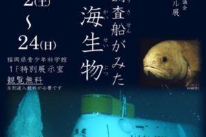 潜水調査船がみた深海生物 福岡県青少年科学館にて開催